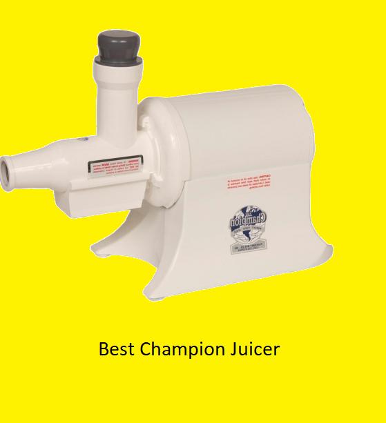 Best Champion Juicer Reviews 2020
